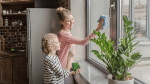 10-Mirror-and-Window-Cleaning-Tips