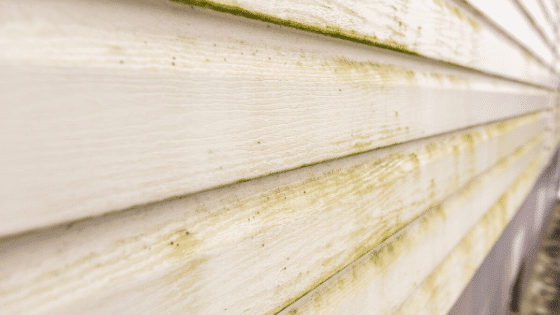 Cleaning-Your-Siding_-Professional-or-DIY_