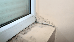 How-to-Prevent-Mold-on-Your-Window-Sills