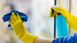 The-Best-Products-to-Clean-Your-Windows-With
