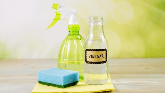 Using-Vinegar-for-Squeaky-Clean-Windows-in-2020